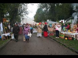 Праздник, посвящённый 90-летию Боровичского района (30 сентября 2017 г.)