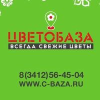 c_baza