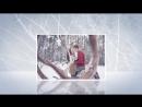 Зимняя прогулка.  Видео из фотографий Владимира Латынникова