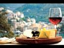 Гид по итальянским винам