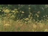 Баллада о доблестном рыцаре Айвенго - Баллада о вольных стрелках (Высоцкий)
