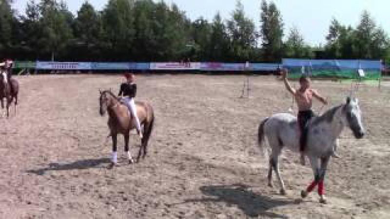 Управление лошадью без седла и уздечки Показательное выступление Школы имени г...