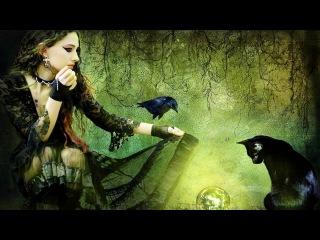 Необоримый ужас, Охота на ведьм, Затерянные миры, программы и документальные фил...