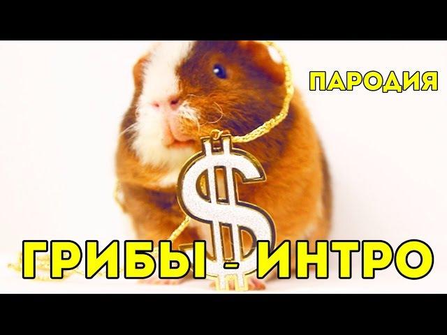 ПАРОДИЯ ГРИБЫ ИНТРО SvinkiShow