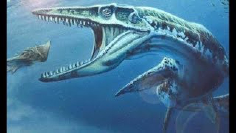 Dinosaurs Predators Of The Deep - National Geographic Animals Wild