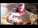 Рыбалка в ПодмосковьеБешеный клев