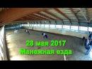 Манежная езда 28 мая 2017 - КПК Кентавр