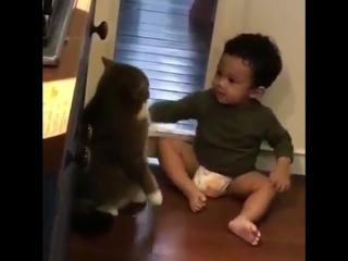 «Какие же человеческие детёныши навязчивые»
