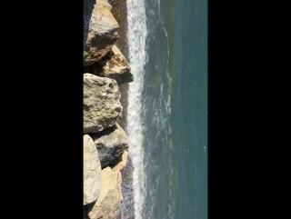 Daniel adins e darius filip sono al mare in porto verde