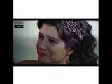 turkish_kalp