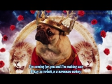Fall Out Boy - Irresistible (Starring Doug The Pug) ft. Demi Lovato (subtitles)