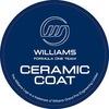 Ceramic Williams F1