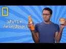 Air Freshener | Ingredients With George Zaidan (Episode 6)