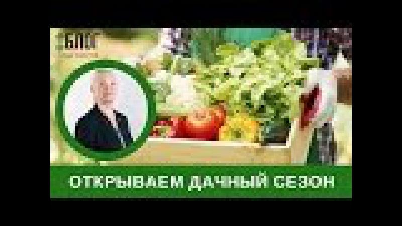 Открываем дачный сезон без вреда для здоровья! Блог Н.Г. Байкуловой Будь здоров! » Freewka.com - Смотреть онлайн в хорощем качестве