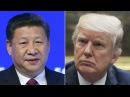Трампа призывают поднять вопрос прав человека на встрече с Си Цзиньпином