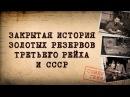 Дмитрий Перетолчин Александр Мосякин Закрытая история золотых резервов Третьего рейха и СССР