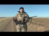 топ 5+1 клипов про охоту и рыбалку