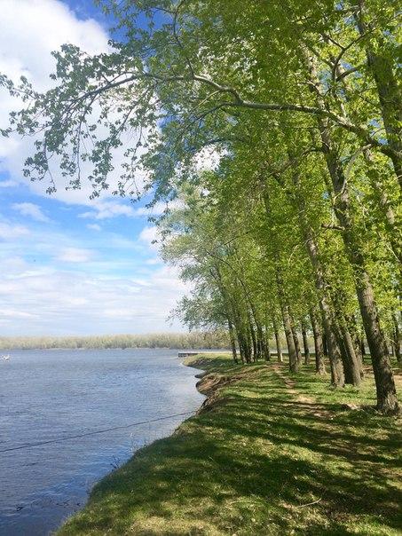 Природа Самарской области
