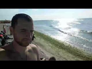 утро,пляж,гей вы бджолы