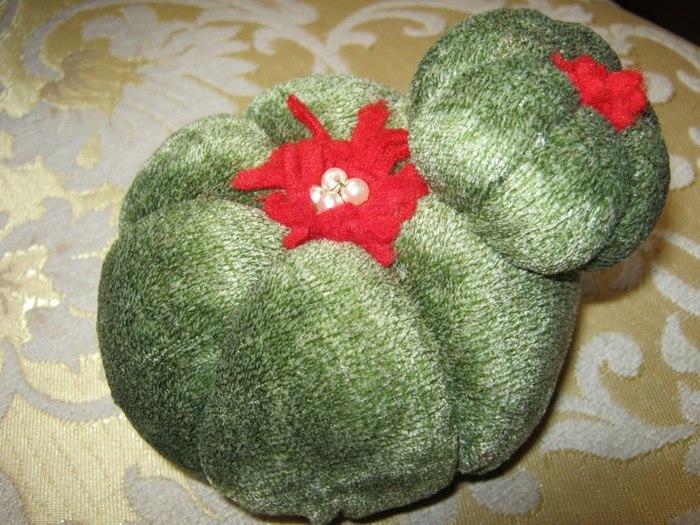 кактус игольница