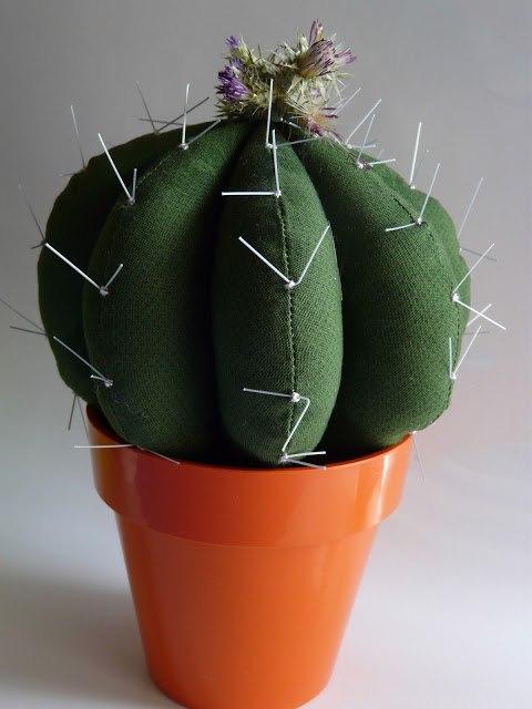 игольница кактус