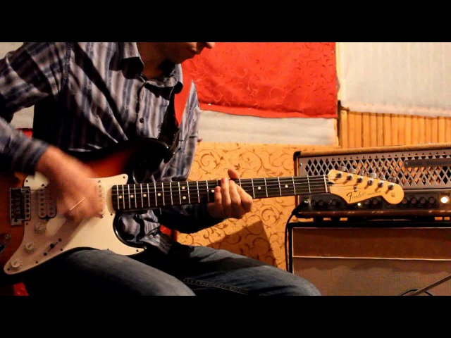 Blues Classic Alexander Pribora (Neck , Middle). Fender Standard Stratocaster (Mexico).