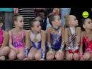 Новый шаг к успеху гимнасток из Шушар