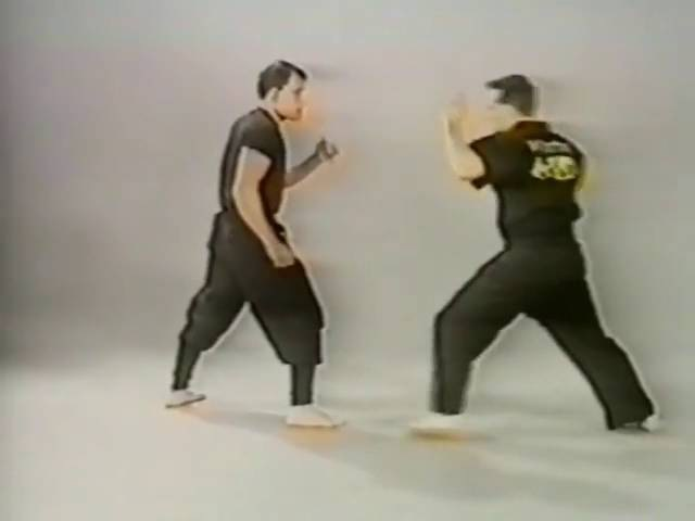 Ninjutsu Robert Bussey Part 1
