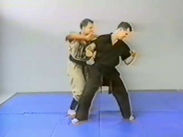 Ninjutsu Robert Bussey Part 3