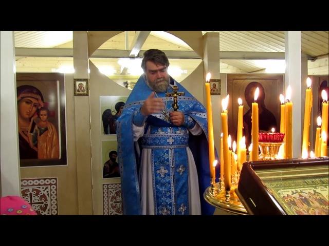 Протоиерей Роман Гуцу - Проповедь на Покров Пресвятой Богородицы в храме свт. Лу ...