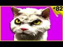 Смешные видео с кошками и котами Приколы с котами до слёз