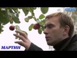 Владимир Ждамиров  СКАЖИ ЗАЧЕМ  24 01 2017 В М Н Ш  НОВИНКА