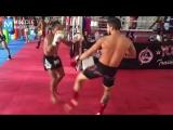 MUAY THAI MONSTER - Saenchai _ Muscle Madness