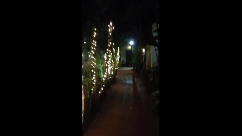 Christmas Decoration in Rococco Ashvem. Magic walk.