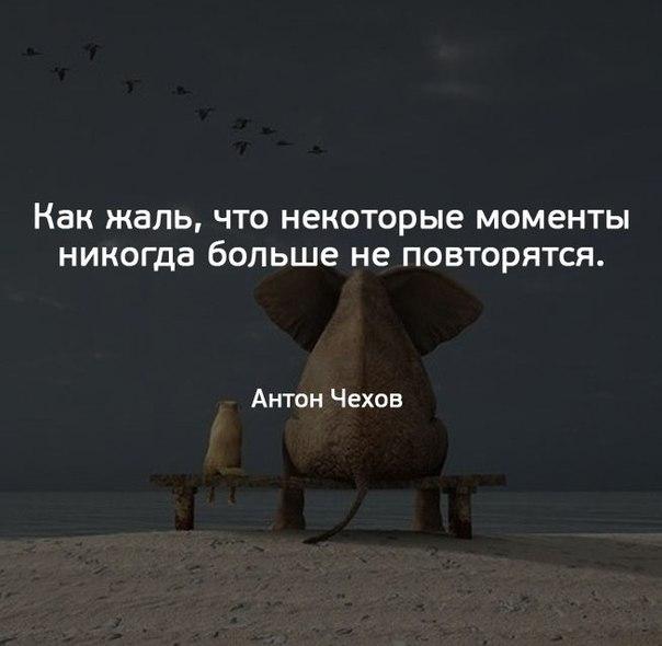 Фото №456290765 со страницы Данила Селихина