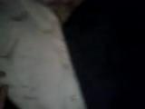 пиджаки яцунова