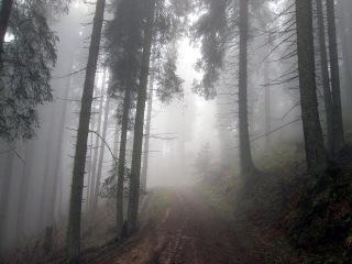Похід від Верховини через Угорські скелі і Піп Іван до Вухатого каменю. Частина 1