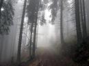 Похід від Верховини через Угорські скелі і Піп Іван до Вухатого каменю Частина 1
