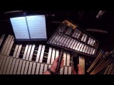 West Side Story Percussionist's Perspective