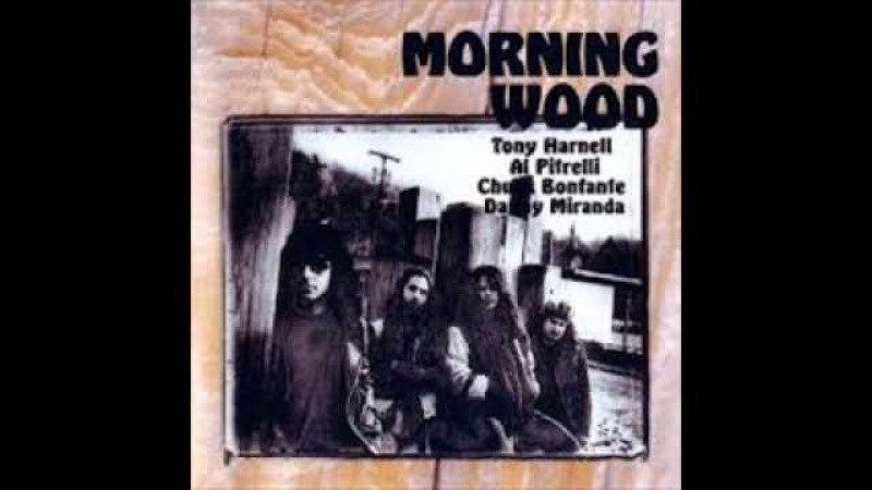 TONY HARNELL MORNING WOOD - SILENCE