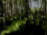 Анатолий Горохов Песня в платочке