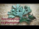 Веточки зелени из фоамирана. Платицериум (папоротник Олений рог)