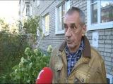 В самом центре Ярославля развернулась спецоперация по спасению совы