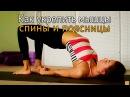 Как укрепить мышцы спины и поясницы rfr erhtgbnm vsiws cgbys b gjzcybws