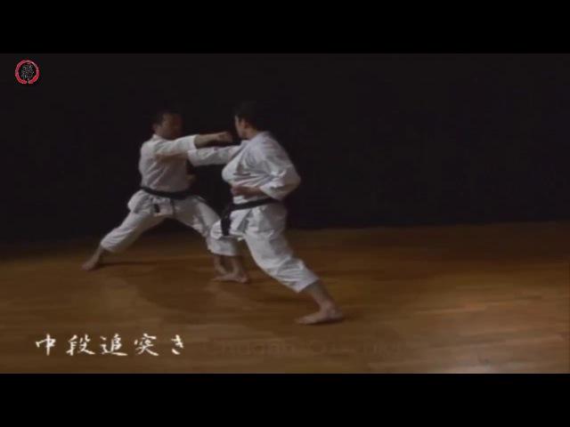 Karate Shotokan JKS - Sanbon-Kumite - Masao Kagawa