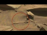 Proof of life on Mars - NASA rover discovers a large SPOON on Mars - Images show spoon shaped object