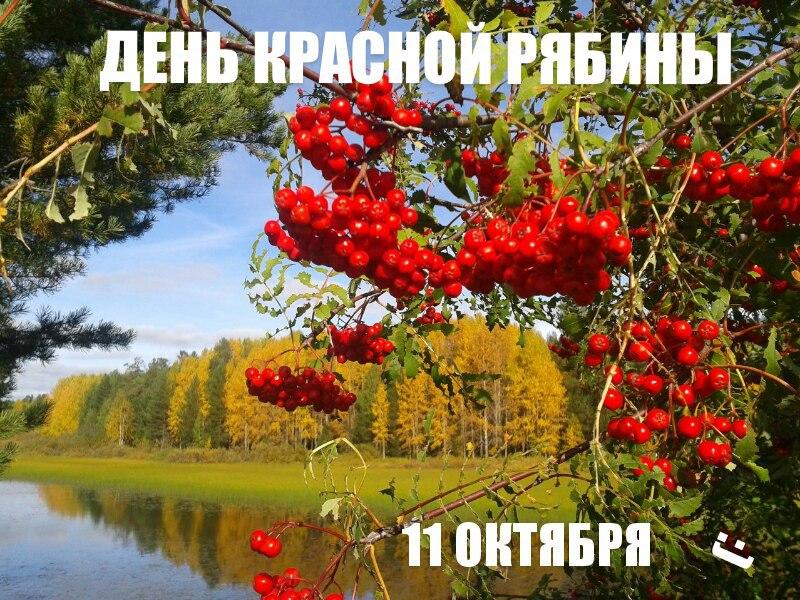 https://pp.userapi.com/c837427/v837427536/730f9/xO_I05cgBMw.jpg