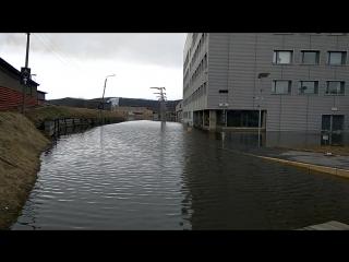 Наводнение в транспортной компании Деловые линии.