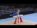 Олег Верняев Конь-махи Финал - Чемпионат мира Монреаль 2017
