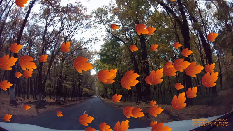 Autumn_vrn